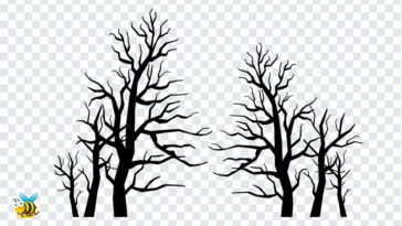 Spooky Trees PNG